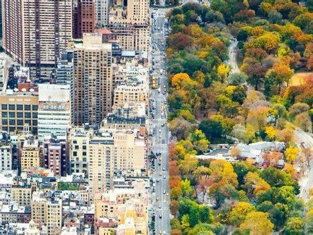 City vs. The Burbs